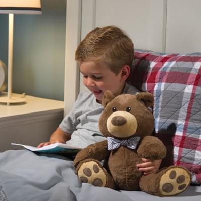 The Storytelling Bear