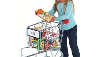 The Child's Personalized Shopping Cart