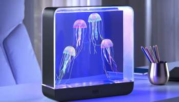 Hypnotic-Jellyfish-Oceanarium