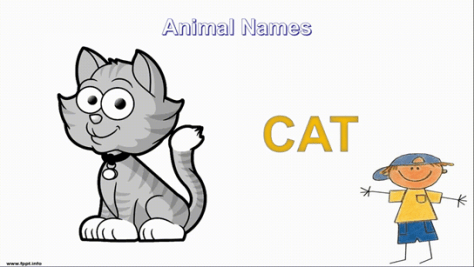 grey colored cat illustration
