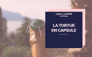 activité tortues en capsule Kidways