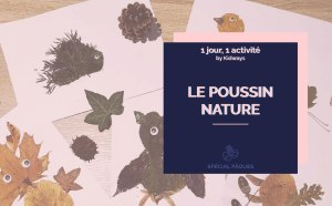 poussin nature kidways image de blog