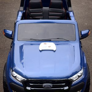 34 KA422 - 2017 Blue Ford - Hood With Remote