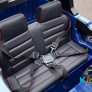 34 KA422 - 2017 Blue Ford - Leather Seats