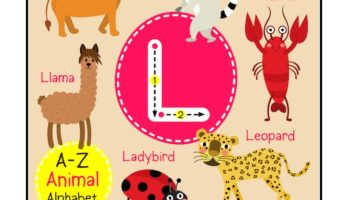 Kindergarten Letter L Picture Card worksheet