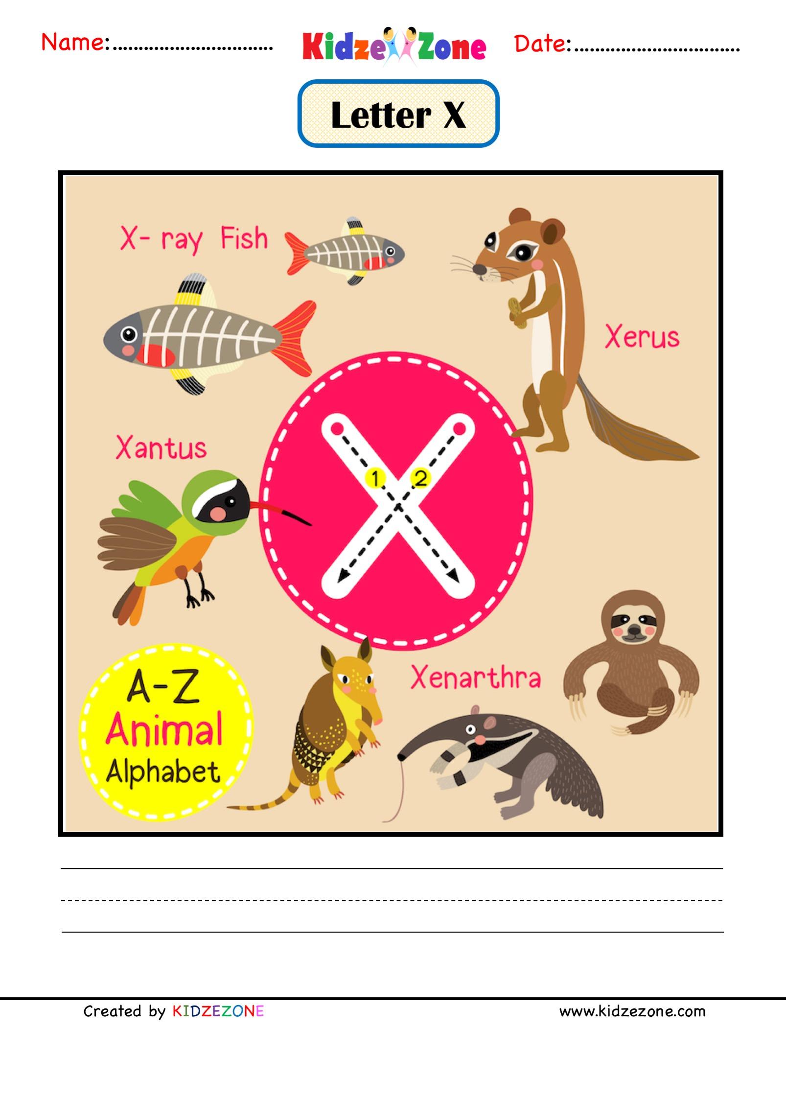 Kindergarten Letter X Animal Picture Cards Worksheet