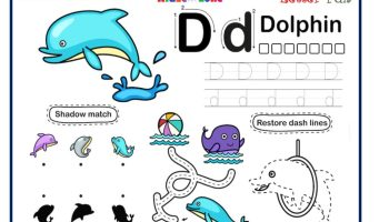 Letter D Tracing, Writing, Matching and Fun Activity Worksheet