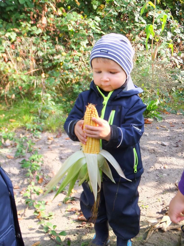 Naturerlebnis-Kid-Zone-Kinderbetreuung-2