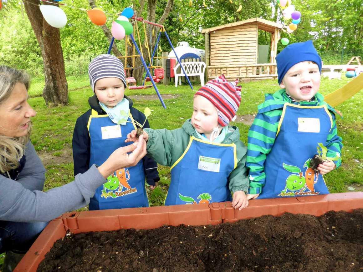 Gemüsebeet-Kid-Zone-Kinderbetreuung-4