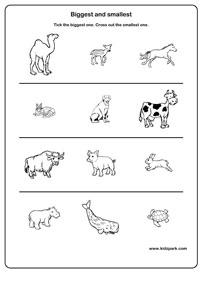 Biggest and smallest worksheets, Printable Activity Sheets