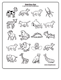 Activity Sheet To Identify And Draw A Circle,Science