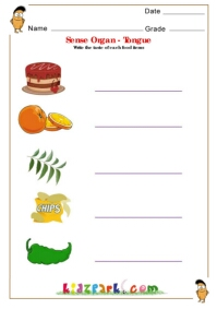 Human Body Parts Worksheets For Children