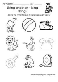 Circle Living and Cross Non Living Thing Worksheet