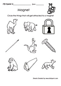 NEW 462 FIRST GRADE SCIENCE WORKSHEETS MAGNETS