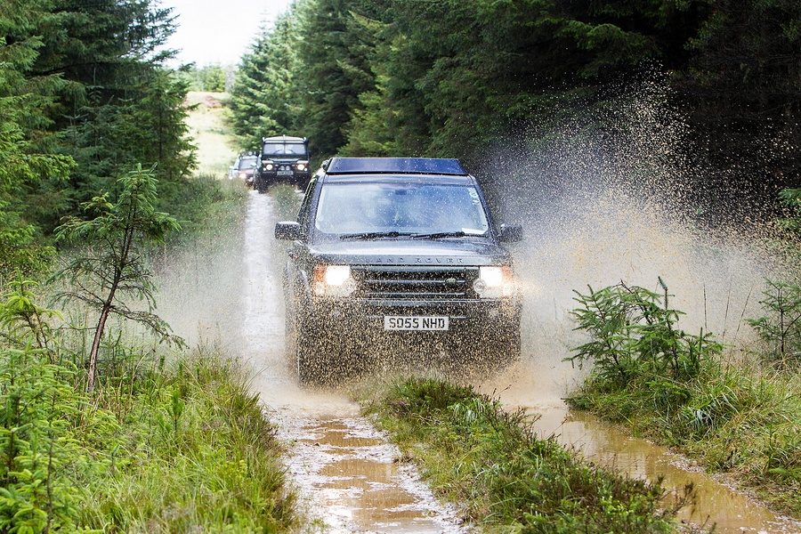 kielder_safari_aug_2017_0024