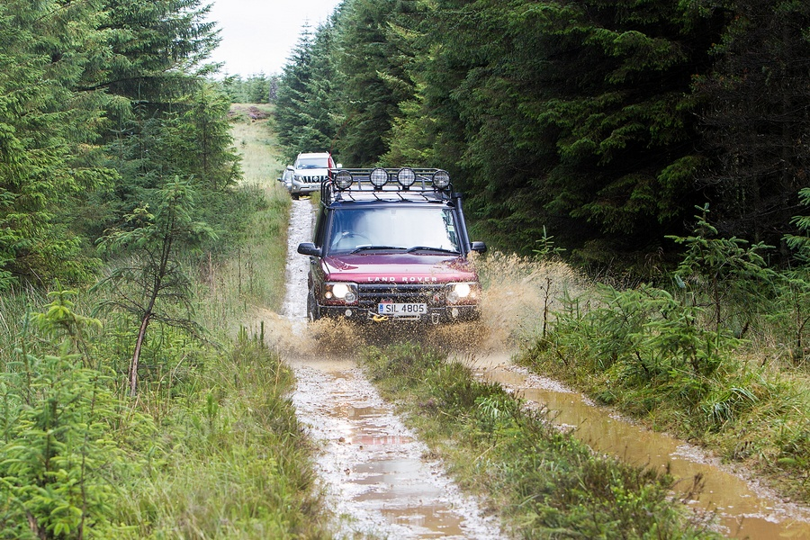kielder_safari_aug_2017_0027