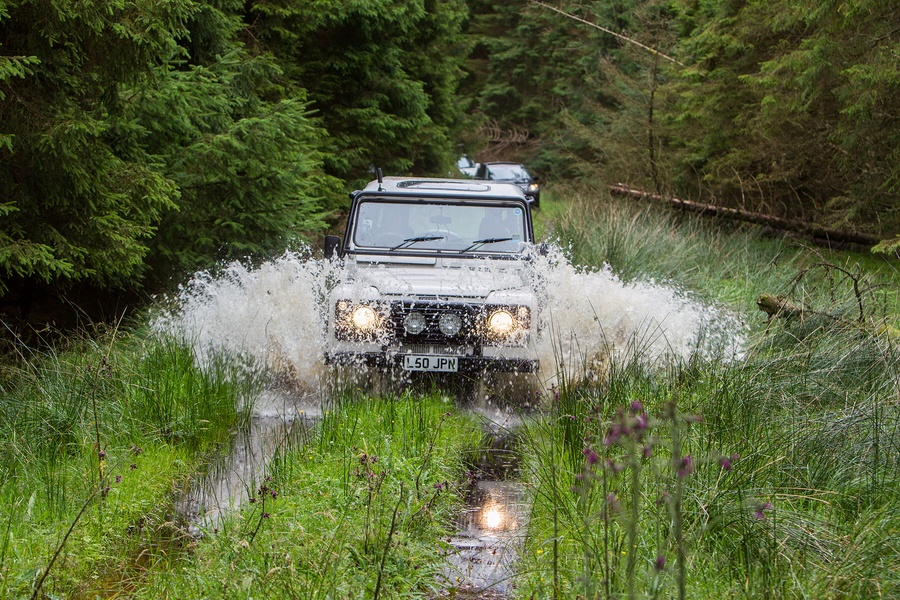 kielder_safari_aug_2017_0031