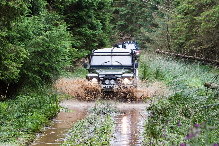 kielder_safari_aug_2017_0037