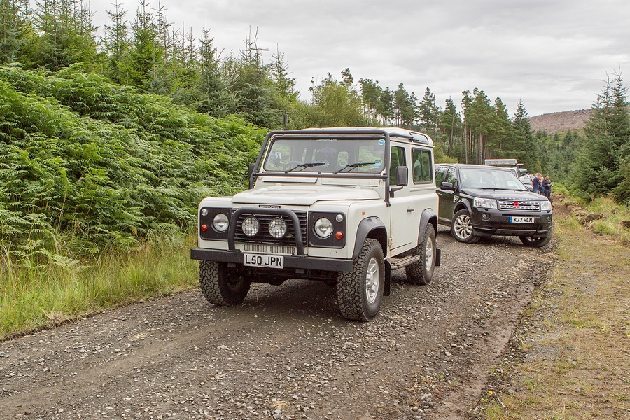 kielder_safari_aug_2017_0045