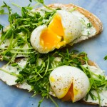 eggs on toast with sprouts and chive cream cheese