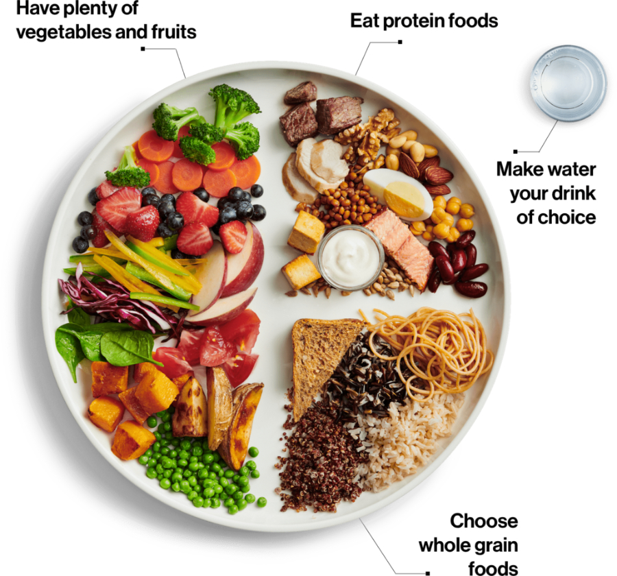 healthy plate food guide