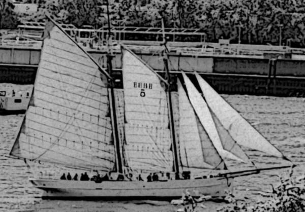 Schwarz - Weiß - Strichzeichnung eines Segelboots