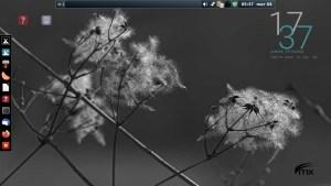 Ilustración 48: MX Linux 19.3, cuando se escoge la versión con XFCE, también integra el escritorio Fluxbox.