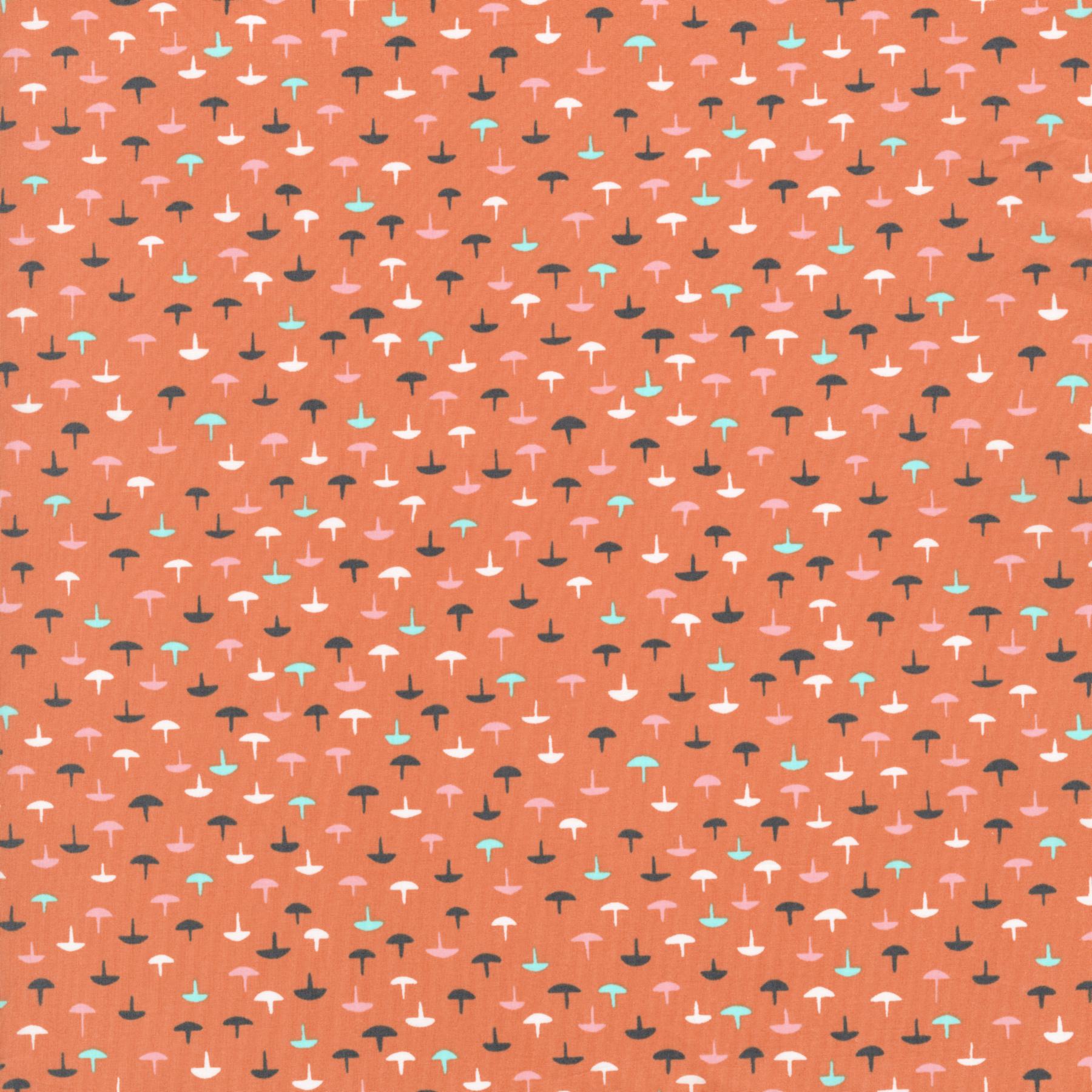 3005-031.tacks.coral.LAWN