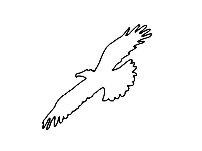 Very popular images Malvorlage Adler
