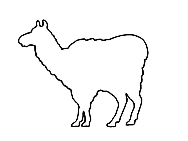 Malvorlage Lama