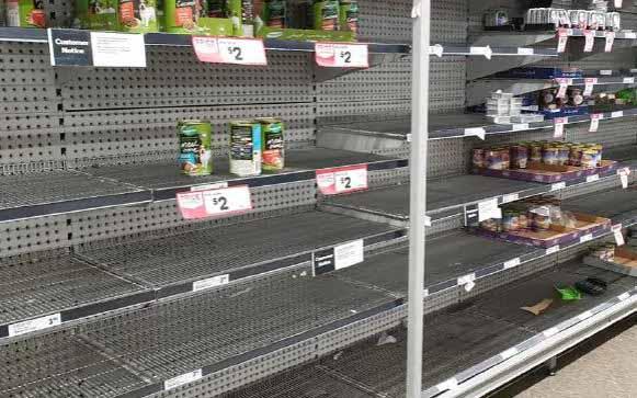 Pet Food Shortage Hits Supermarkets Nationally