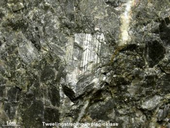 Plagioklaas_met_tweelingstreping_in_leucogabbro_-_Tensfeld_Dldjpg