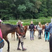 Ponyranch Arnsberg - Sommer 2016 (33)