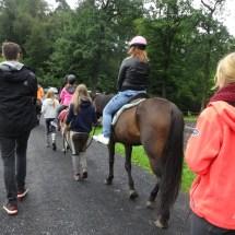 Ponyranch Arnsberg - Sommer 2016 (37)