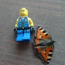 Lego-Fotowelt von Julien und Nico (13)
