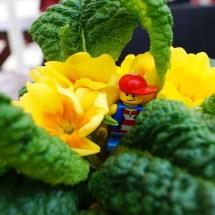 Lego-Fotowelt von Katharina und Celina- (24)