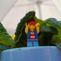 Lego-Fotowelt von Katharina und Celina- (25)
