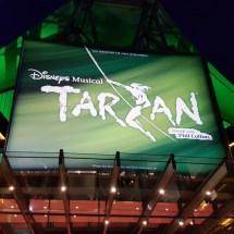 Musical Tarzan - KiJu 2017 (14)