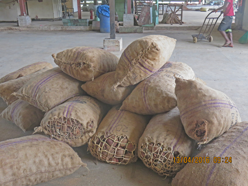 Overview of the Coconut Industry 2018