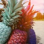 『パイナップルの花束を君たちに』~人を疑う気持ちにどうやって勝つのか~(6)