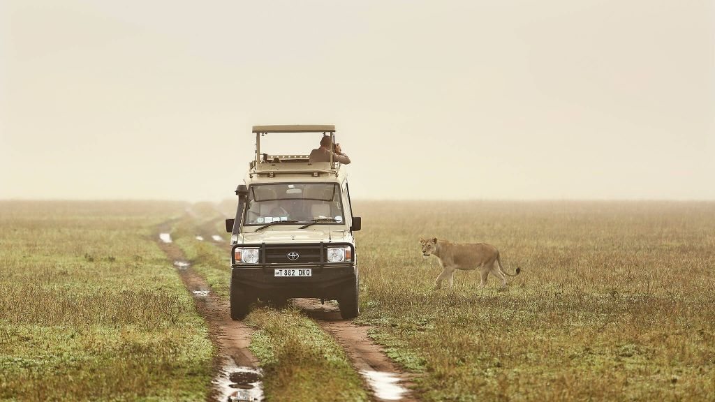 3 Day Tanzania Lodge Safari Tarangire & Ngorongoro Crater