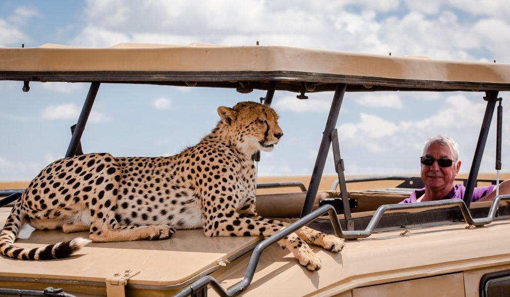 4 Days Kenya - Masai Mara | Cheetah Safari Itinerary