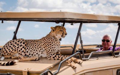 4 Days Kenya – Masai Mara | Cheetah Safari Itinerary