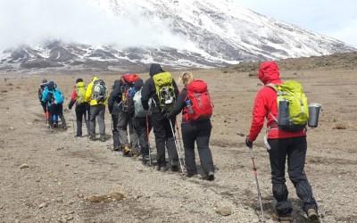 6 Days Kilimanjaro Rongai Route Group Join Climb
