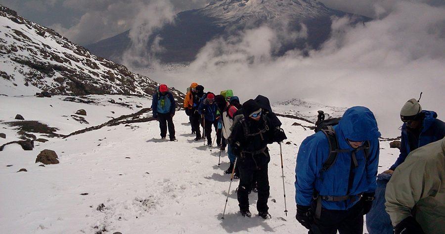 Mount Kilimanjaro Trekking - Lemosho Route - 8 Days