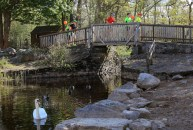 Killarney National Park was the perfect backdrop for this year's Lakes of Killarney Marathon and Half Marathon
