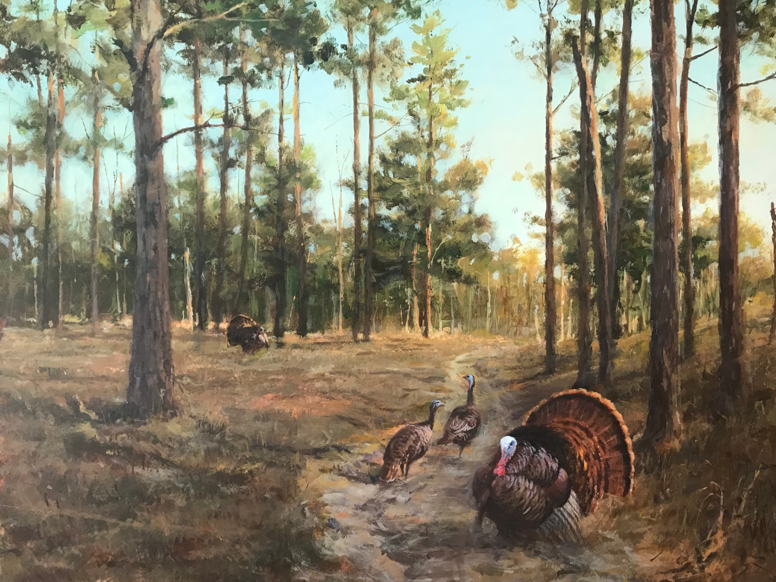 """Tough Decision"" - Eastern Wild Turkey Painting by Jim Killen"