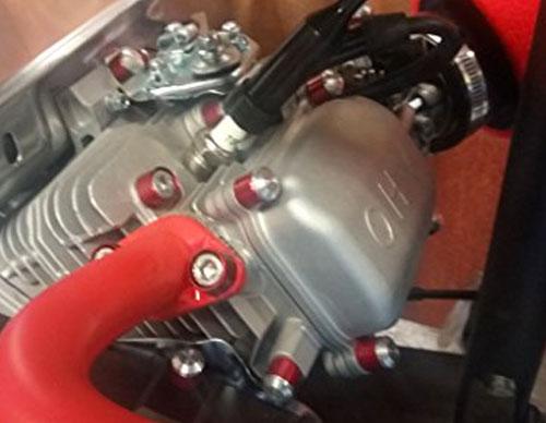 Black Ano Predator//Honda 212 cc Total Dress Up Bolt Kit FREE SHIP PTE-5095