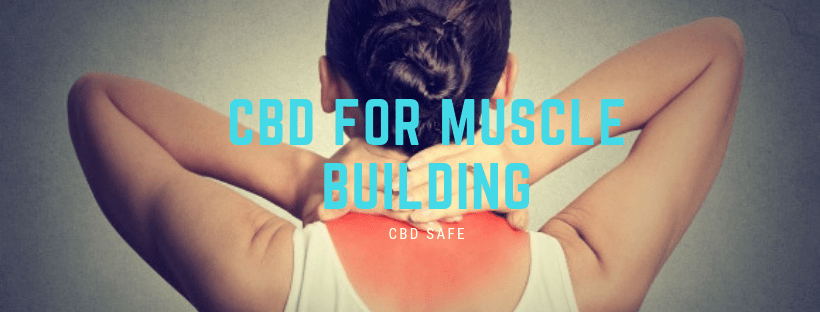 CBD for Muscle Building