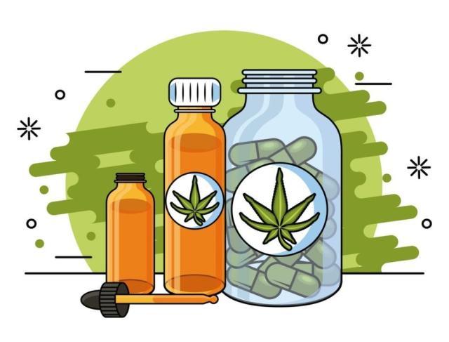 cannabis users